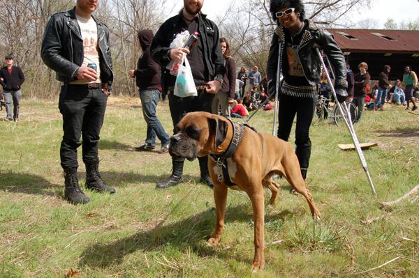 the punkest dude,  the punkest dog.