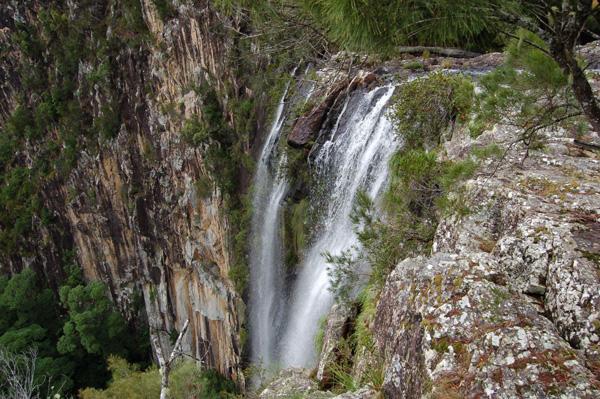 minyon falls-byron hinterland