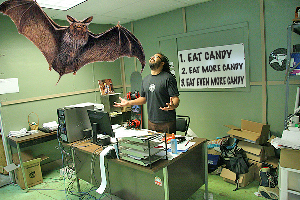 Damn, I didn't know there were bats that big.