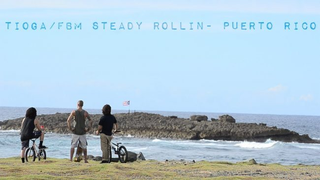 Steady Rollin Puerto Rico